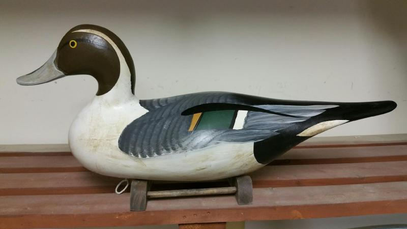 Antique Full Size Pintail